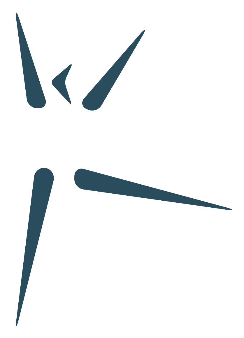 aktifys logo